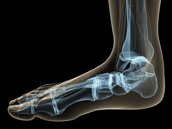 Foot-bones-posture